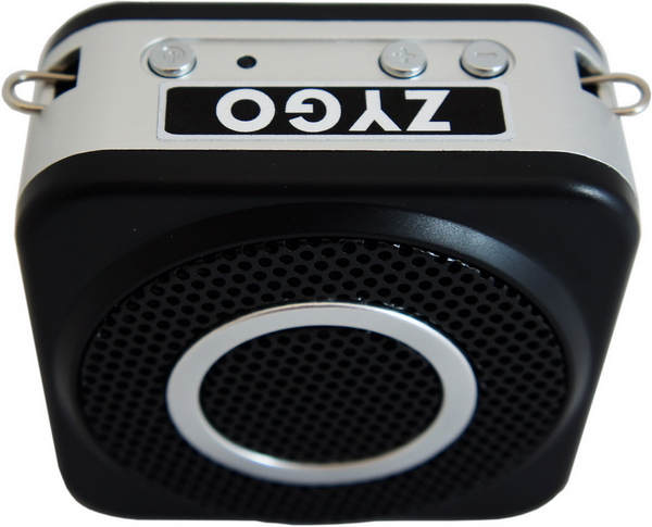 ZYGO Wireless Voice Amplifier